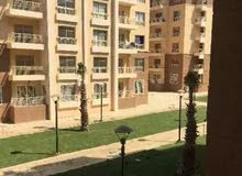 for rent in Cairo Madinaty apartment