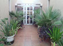 Nice 3 bedroom with pool in egaila.