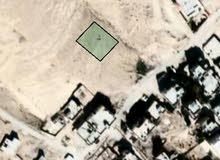 قطعة ارض من اراضي ابو الزيغان الغربي
