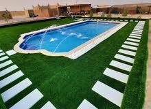 مسابح فايبر جلاس لأول مرة في الإمارات