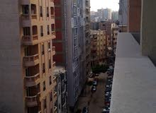 تعالى شوف الشقة  ده اللي في شارع العريش