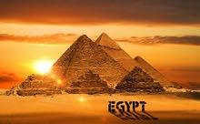 تأشيرة مصرية الآن رقمية