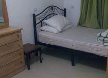 Best price 70 sqm apartment for rent in IrbidUniversity Street