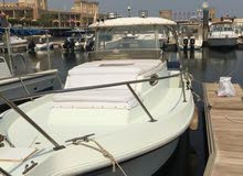 Motorboats in Kuwait City is up for sale