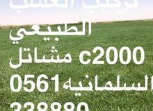 توريد وتركيب جميع انواع الاشجار الزينه والمثمره والنخيل العربي والوشنظونيه