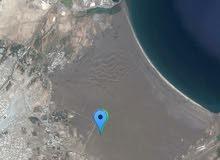 أرض للبيع ولايه قريات مخطط ساحل