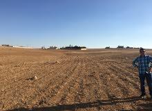 أرض 700 متر استثماريه بالقسطل الموارس