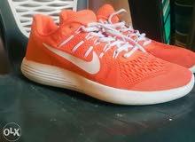 Nike orginal run shoes جزمة جري نايك أصلي