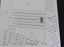 10 دونمات زراعي على شارعين في قرية الأشرفية _ المفرق