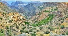 السياحة في الجبل الأخضر ( visiting Jabal al-akhdar)