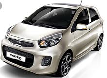 kia picanto 2016 for rent