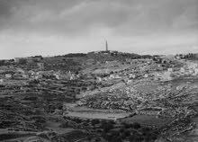 ارض بموقع مميز للبيع في القدس في منطقة ابو ديس