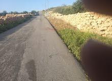 للبيع أرض زراعيه أراضي غرب عمان في منطقة مميزه