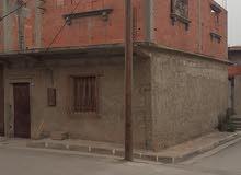 منزل للكراء القلتة الشلف