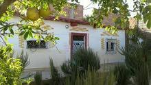 منزل بحديقة في عرباوة