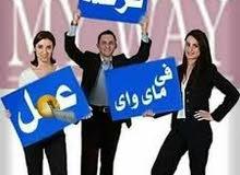 القاهرة ومنصوره و دمنهور الاسكندريه