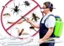 البركه لرش المبيدات الحشريه خبره 30عاما  رواد  المكافحه اﻻمنه للحشرات