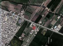 قطعة أرض في بورقبة ولاية منوبة 250 م2