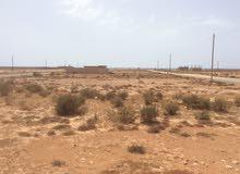 ارض مساحتها 240 علي شارعين في مصيف النورس قطران و كهرباء