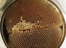 عسل سدر افضل العسل  على الضمان