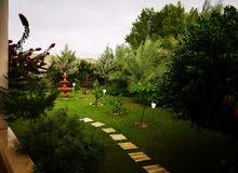 ارض 520م في ولي العهد بها منزل بالقرب من جامع طيبة للبيع،،