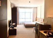 luxury studio for rent in zinj