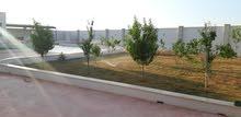 استراحة تشطيب حديث عين زارة أمام مسجد الحاراتي
