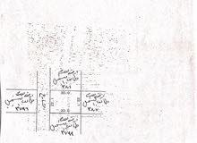 ارض سكنية للبيع في المالكية مساحة كبيره