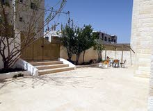 شقة طابق أرضي مدخل مستقل مع حديقة, في مادبا حنينا