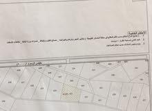 ارض 500 متر للبيع