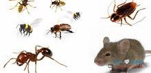 نرجو الإلتزام بالمطلوب فني مكافحه حشرات بخبرة او بدون