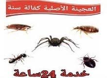 مكافحة حشرات وقوارض 90009545