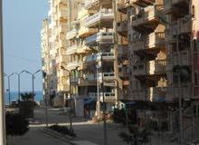 امتلك شقة بشاطئ النخيل (6 اكتوبر) رؤية هائلة للشاطئ _9 عمارة من البحر