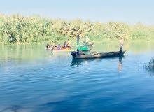 ارض (الارض طابو ) زراعيه 25 دونم على النهر مباشرتا تسر الناظر ومسجله في دائرة العقار