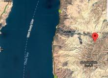 مزرعة للبيع على طريق مكاور مطلة على البحر الميت