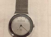 watch.  original skagen watch