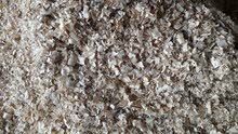 نشارة خشب خيل و دواجن Sawdust