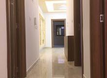 اخر شقة بالاسكان - ارضي 130م مع ترسات وحديقة 140م - طريق المطار ي ضاحية النخيل