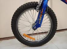 Fire Wheel Bike for Sale. دراجة فاير ويل للبيع