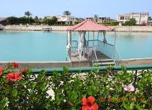 للايجار اليومى : فيللا في مارينا(5)-علي البحيرة مباشرة مكيفة - مرسا-2 حديقة
