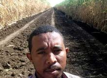 باحث عن وظيفة مهندس زراعي خبرة 5 سنوات