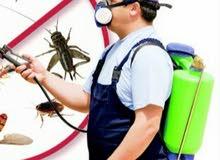 مكافحه الحشرات والقوارض المزعجه باقوي المبيدات