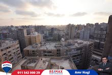 an apartment for rent in Alexandria
