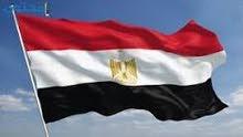 خدمات التأشيرة المصرية الرقمية استيكر