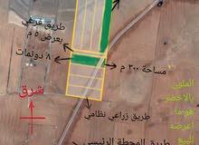 أرض بمنطقة  الدير علي للبيع للضرورة امكانية البيع من 6 دونمات واجهة على الطريق