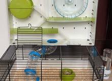 قفص هامستر جديد مع هامتسر مجانا new hamster cage for sale with a free hamster