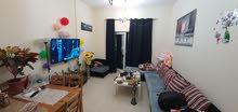 شقة مفروشة للايجار الشهري