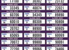 ارقام سيارات دبي