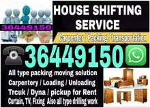 PROFESSIONAL SERVICES HOUSE OFFICE STORE WAREHOUSE SHIFTING