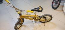 BMX PORSCHE